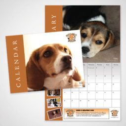 Beagle Paws 2013 Calendar Design