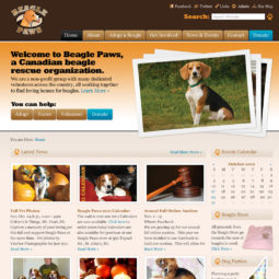 Beagle Paws Website Design and Development - Home