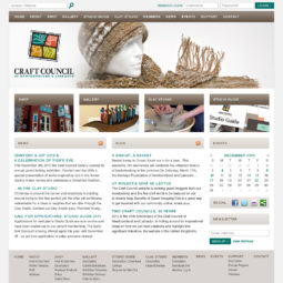 Craft Council Website Design - Home