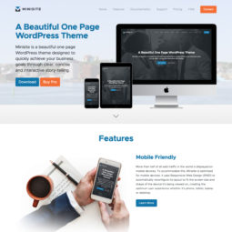 Minisite Website Design and Development - Home