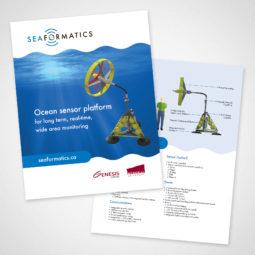 Seaformatics Flyer Design