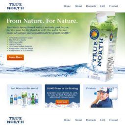 True North Springs Website Design and Development - Home