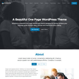Minisite Pro WordPress Theme Design and Development - Home